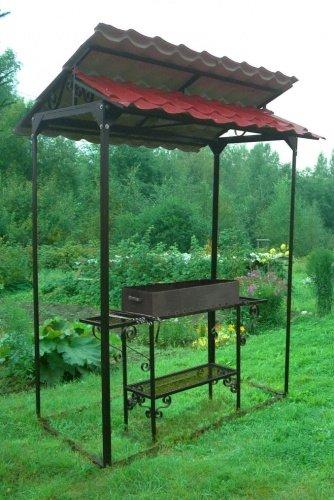 Выращивание имбиря в домашних условиях в открытом грунте 95