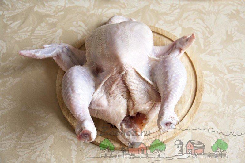 Если снится курица. Значит, будет дочь? Планирование пола