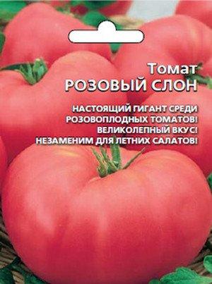 самые лучшие сорта ро ключницы Москве