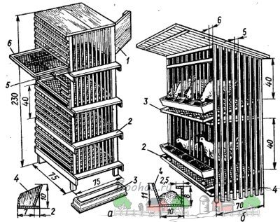 Клетка для цыплят бройлеров своими руками чертежи