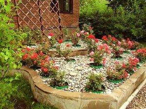 Розарий на даче своими руками фото садовый  728