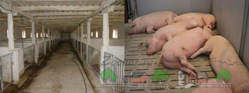 Как сделать засыпной свинарник своими руками