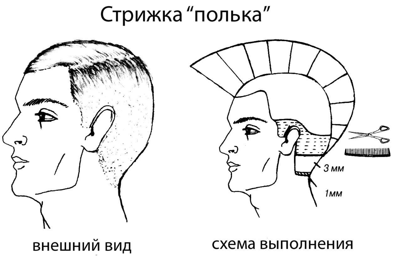 Мужские схемы стрижки