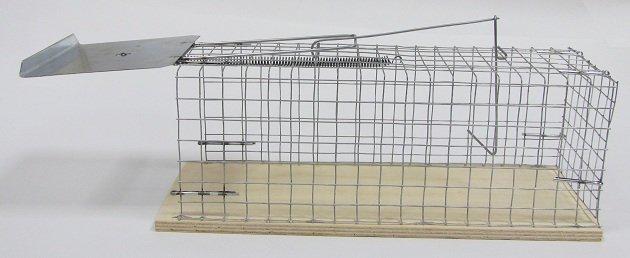 Ловушка для лисы своими руками из сетки чертеж 44