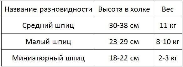 федерация вес шпицев в 2 месяца постов Балтийской таможни: